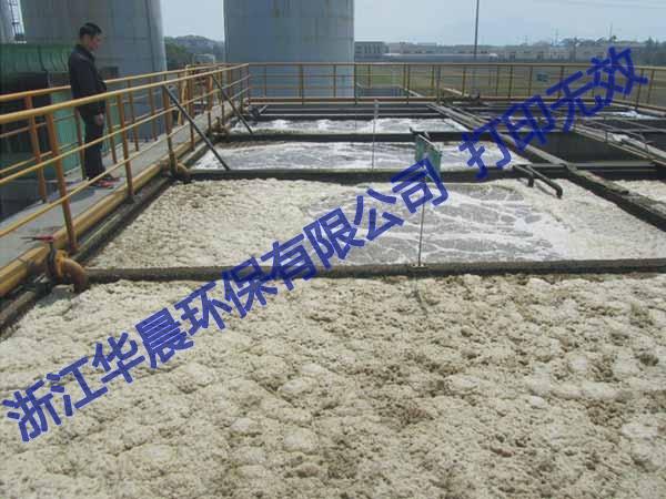 吴中皮革污水处理设备